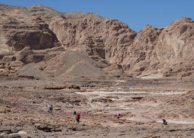 Die Suche nach klingenden Steinen