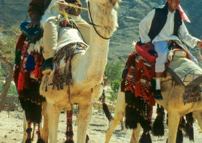 Flirtende Jugendliche - Wenn junge Männer heutzutage sich und ihre Kamele heraus putzen, um auf Brautschau zu reiten, dann darf eines nicht fehlen: Das Sound System. Ehemals Kassetten, heute mp3 wie überall auf der Welt.