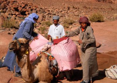 Beladen - Kamele tragen das Gepäck, während wir mit dem Tagesrucksack wandern.