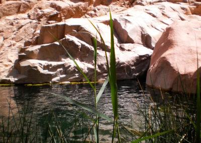 Gillt al-Azrag - Im Granit bilden sich natürliche Becken, in denen sich Regenwasser sammelt. Früher waren dies die einzigen Wasservorkommen, die den Beduinen zur Verfügung standen. Heute lässt man Touristen darin baden.